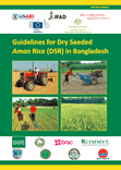 Guidelines for Dry Seeded Rice (DSR) in Bangladesh