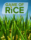 Game of Rice