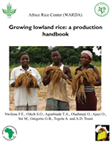 Growing lowland rice: a production handbook