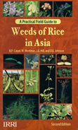 Practical field guide to weeds of rice in Asia, 2nd edition